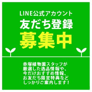 LINEともだち登録