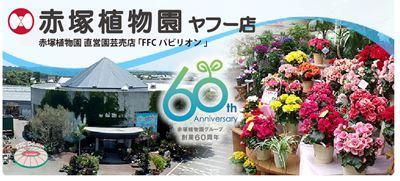 赤塚植物園ヤフー店
